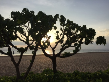 Kaanapali Beach - Maui Sunsets